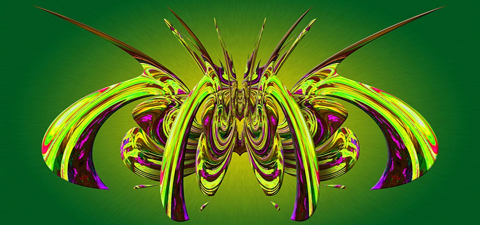 Aracnidea